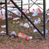 Sandy Lane Barbados Gold Cup: Thoroughbred Trash?