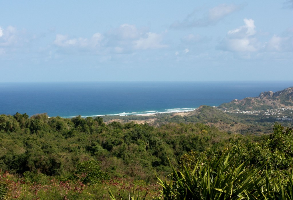 From Farley Hill we admired Barbados' dramatic east coast.