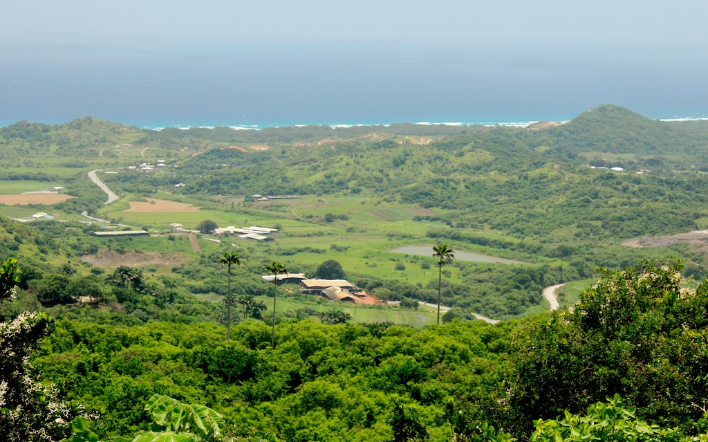 Green and lush, like England. This is outside of Bathsheba on Barbados' east coast.