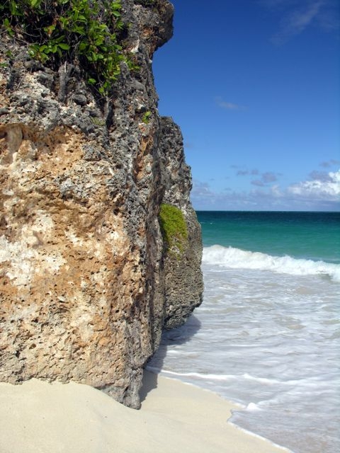 The massive coral that is the island of Barbados