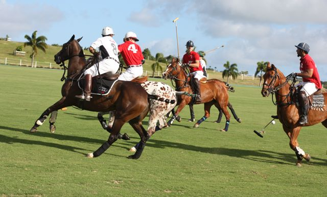 Another similarity: Polo (as well as cricket) is a beloved sport