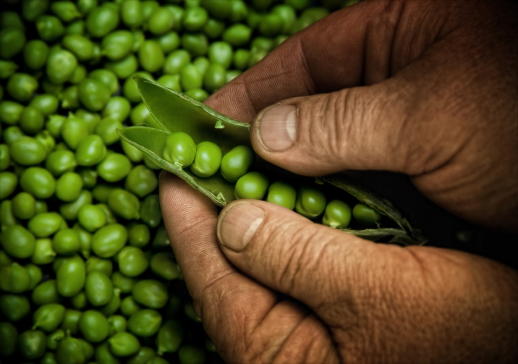 buying peas in Barbados